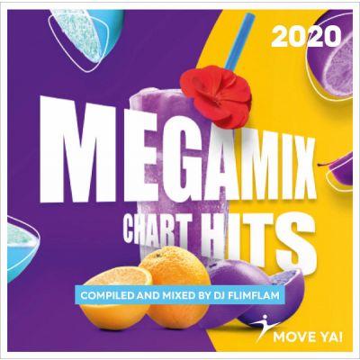 Megamix Chart Hits 2020 MP3
